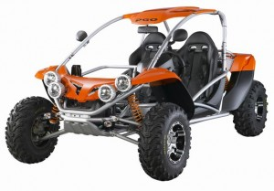 500cc PGO buggy